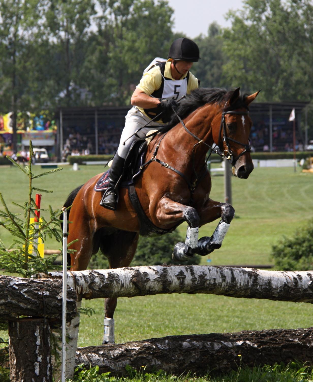 Rodeo au Heup, druhý z velkých favoritů Mistrovství ČR ve všestrannosti 2014 Foto Šárka Bělohlavová